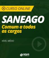 Curso Online SANEAGO - Comum a Todos os Cargos