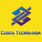 Apostila Concurso Cobra Tecnologia S.A 2013