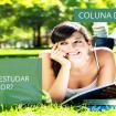 coluna-da-catia-estudar-no-calor