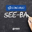 SEE-BA blog fbb