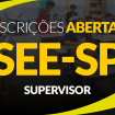 face-see-sp-supervisor-insc-ab