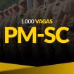 face-PM-SC-1000-VAGAS-tiny