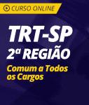 Curso Online TRT-SP 2ª Região - Comum a Todos os Cargos