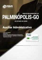 Apostila Prefeitura de Palminópolis - GO - Auxiliar Administrativo