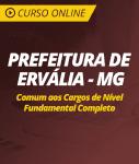 Curso Online Prefeitura de Ervália - MG - Comum aos Cargos de Nível Fundamental Completo