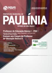 Apostila Prefeitura de Paulínia - SP - PEB I (Ed. Infantil Creche/EMEI - Ensino Fundamental 1º ao 5º ano e EJA I) e Comum aos Cargos de PEB II