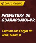 Curso Online Prefeitura de Guarapuava - PR 2018 - Comum aos Cargos de Nível Médio II