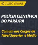Curso Online Intensivo Polícia Científica do Pará - PA 2019 - Comum aos Cargos de Nível Médio e Superior