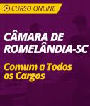 Curso Online Câmara de Romelândia - SC 2019 - Comum a Todos os Cargos