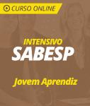 Curso Online Intensivo SABESP 2019 - Jovem Aprendiz