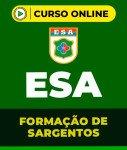 Curso Grátis ESA - Formação de Sargentos