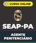 Curso Grátis SEAP-PA - Agente Penitenciário