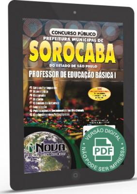 Professor de Educação Básica I (Digital)